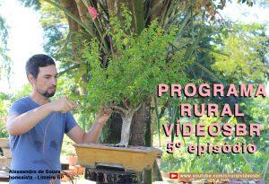 QUINTO episódio do Programa RURAL VÍDEOS Br