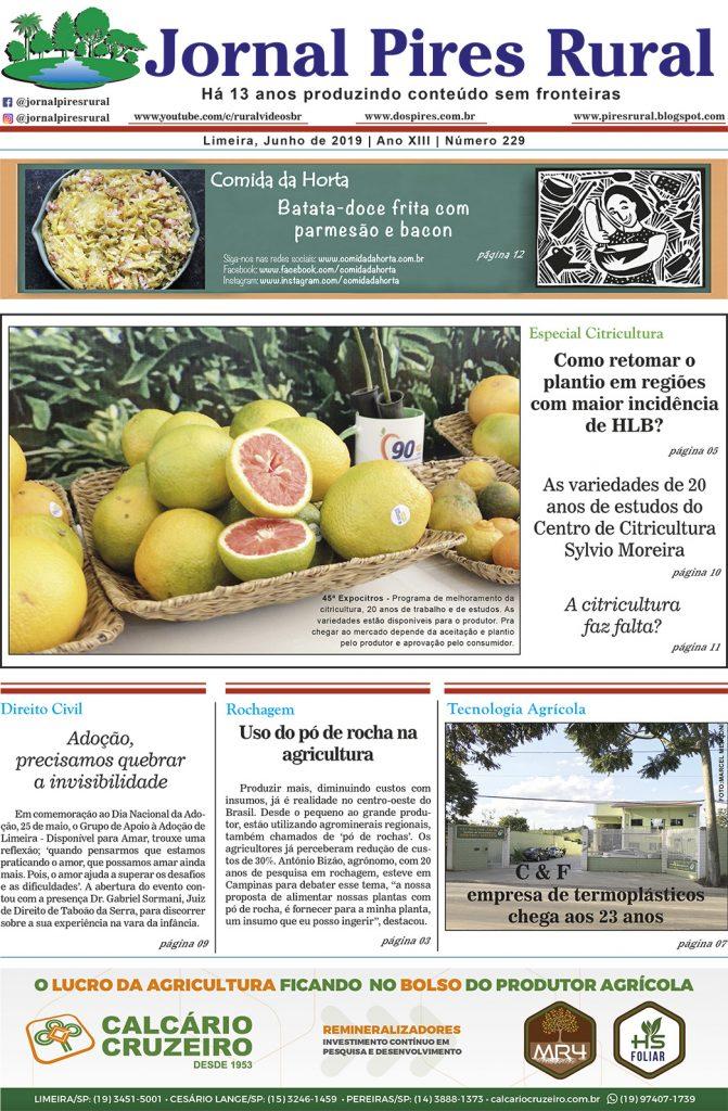 Jornal Pires Rural - edição 229 - Junho 2019