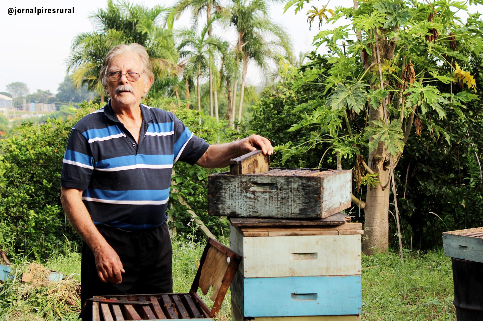Messias Haman iniciou-se na apicultura em 1960