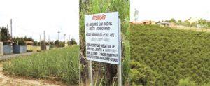 região rural do bairro dos Pires