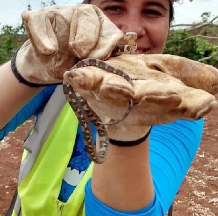 Aricia Monteiro - Médica Veterinária em Resgate e Afugentamento de Animais Silvestres