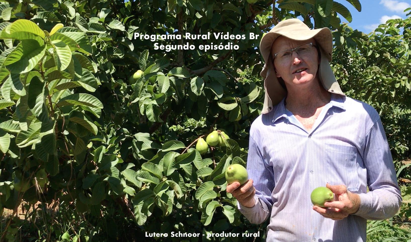 Segundo episódio do Programa Rural Vídeos BR