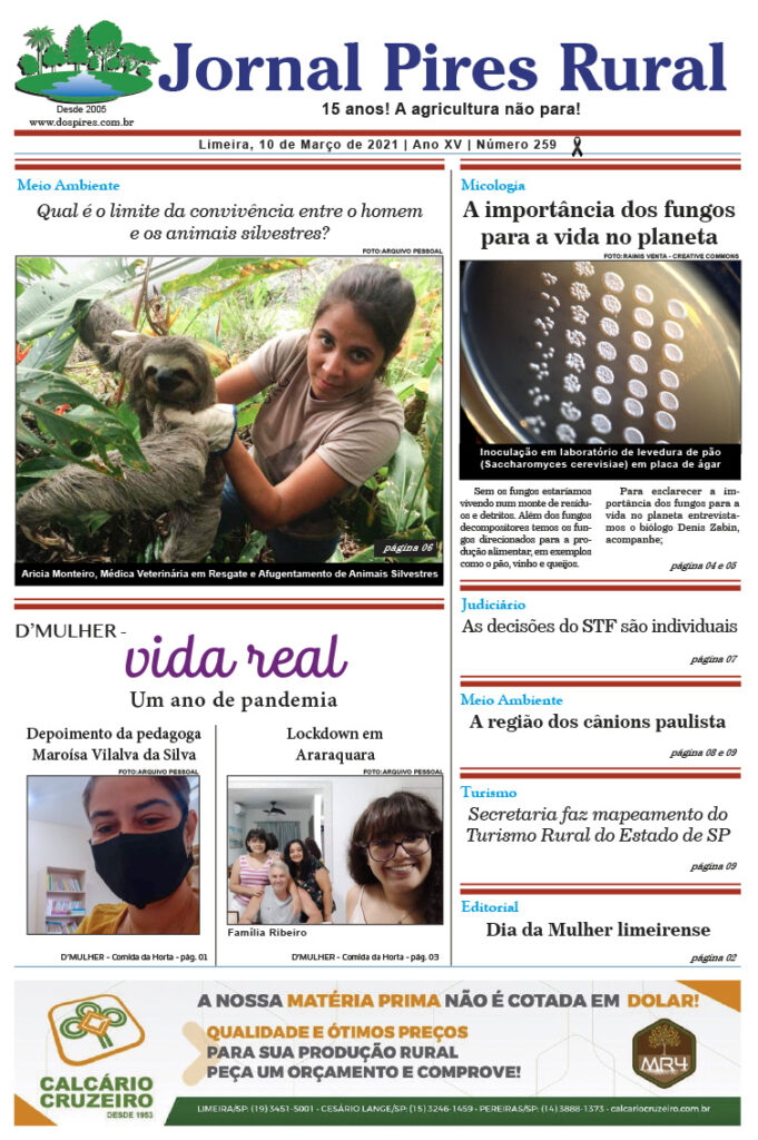 Jornal Pires Rural - Edição 259